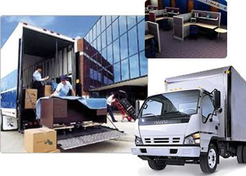 professional local movers in Sharjah