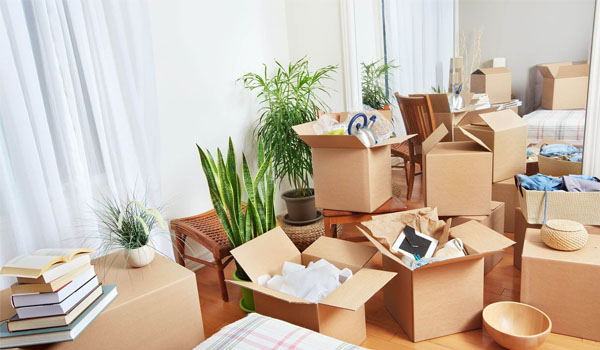 packing removal service